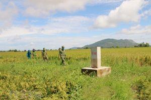 An Giang: Kiểm soát chặt chẽ xuất, nhập cảnh để phòng bệnh Chikungunya