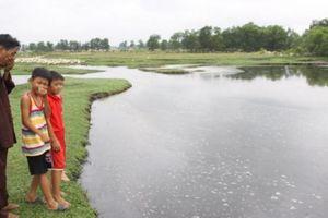 Bị ngưng sản xuất vì gây ô nhiễm, nhà máy bột cá vẫn ngang nhiên hoạt động