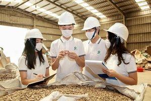 Học sinh Hà Nội tái chế lõi ngô, bán 34 tấn trong 2 tháng