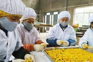 Ứng dụng thiết bị hiện đại tăng năng suất, chất lượng sản phẩm tại cơ sở khô Tiến Phương