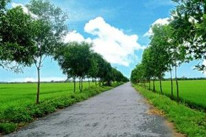 Xã Vũ Lạc (TP. Thái Bình): Dân vận khéo kéo địa phương phát triển