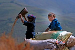 Forecasting labor demand for industrial development in ethnic minority and mountainous regions