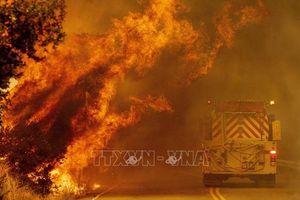 Mỹ điều quân đội tới California hỗ trợ khống chế cháy rừng
