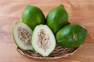 Công dụng tuyệt vời của quả đu đủ xanh: Vừa làm nhiều món ngon vừa trị bệnh
