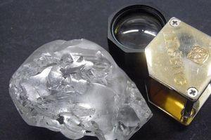 Thợ mỏ đào được viên kim cương 442 carat trị giá 18 triệu USD