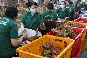 Xuất khẩu rau quả đón cơ hội mới
