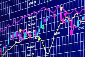 Nhóm cổ phiếu khu công nghiệp, cao su vẫn là tâm điểm thu hút dòng tiền