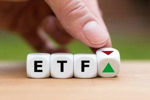 Kỳ tái cơ cấu danh mục ETF quý III liệu có bất ngờ?