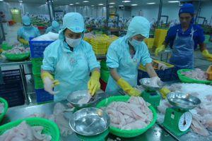 Tây Nam bộ: Nhiều tín hiệu khả quan trong hoạt động xuất khẩu
