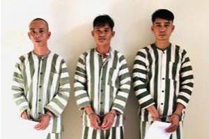 Tây Ninh: Khởi tố nhóm tổ chức xuất nhập cảnh trái phép