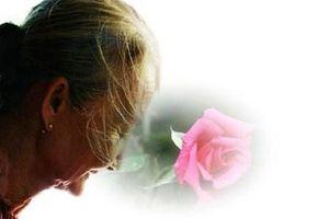 Tháng 7, cho những bông hồng cài áo…