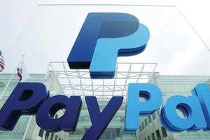 Khi tội phạm qua mặt trí tuệ nhân tạo Paypal