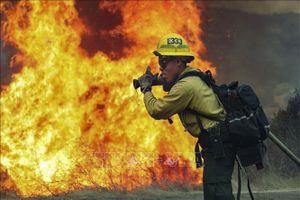 California tuyên bố tình trạng khẩn cấp do cháy rừng