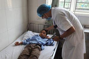 16 học sinh tiểu học nhập viện vì bị ong đốt