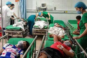 Phá tổ ong trong sân trường, 16 học sinh nhập viện