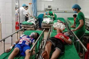 Nghệ An: Chọc phá tổ ong, 16 học sinh tiểu học nhập viện cấp cứu