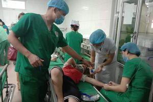 Nghệ An: 16 học sinh tiểu học bị ong đốt nhập viện cấp cứu