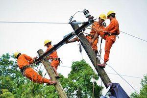 Điện lực Quảng Ngãi: Tuyên truyền pháp luật trong sử dụng điện năng