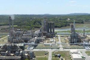 Lọc hóa dầu Bình Sơn lỗ ròng bán niên hơn 4.257 tỷ đồng