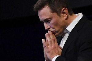 Sau đà tăng như vũ bão, cổ phiếu Tesla vừa có phiên giao dịch tồi tệ nhất trong vòng 10 năm