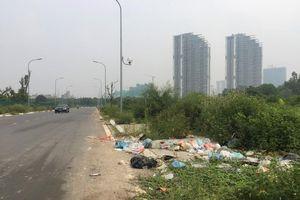 Hố trồng cây trên đường 'trăm tỷ' ở Hà Nội biến thành bãi rác