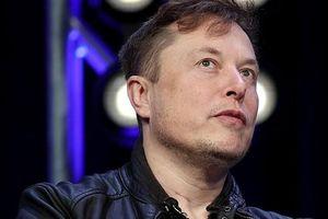 Tài sản của Elon Musk giảm kỷ lục 16,3 tỷ USD trong một ngày