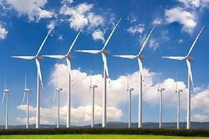 Gia Lai cho phép 99 dự án điện gió vào khảo sát đầu tư