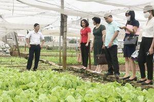Chia sẻ kinh nghiệm thực hiện tiêu chí nông thôn mới nâng cao