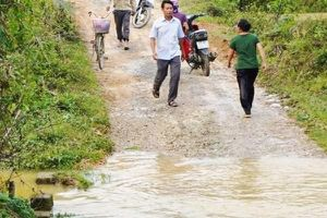 Nghệ An: 3 học sinh tiểu học tử vong dưới khe nước gần nhà