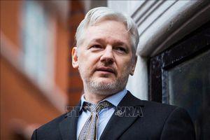 Hoãn phiên tòa xem xét dẫn độ người sáng lập trang mạng WikiLeaks sang Mỹ