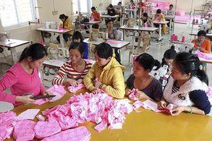 Hải Phòng: Hỗ trợ nạn nhân bị mua bán tái hòa nhập cộng đồng bền vững