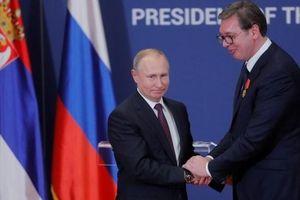 Tổng thống Putin xin lỗi người đồng cấp Serbia vì bài đăng Facebook của phát ngôn viên Bộ Ngoại giao