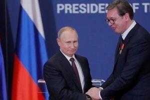 Tổng thống Putin xin lỗi người đồng cấp Serbia vì một bài đăng Facebook
