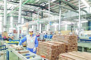 Đã có quy định gỗ hợp pháp, gỗ Việt 'thẳng tiến' vào EU