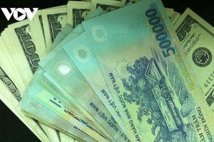 Giá USD biến động nhẹ trong phiên giao dịch đầu tuần