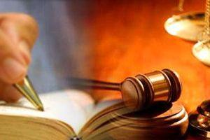 Nâng cao vai trò của chính quyền địa phương và các cơ quan hữu quan về công tác thi hành án dân sự