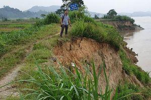 Tuyên Quang: Đê sông Lô đoạn qua thôn Hưng Thịnh nguy cơ bị vỡ