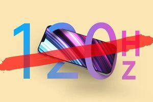 iPhone 12 sẽ không hỗ trợ màn hình 120Hz, iFan vỡ mộng?