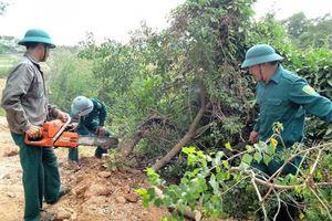 Thanh Chương - Nghệ An: Quyết liệt xử lý 'nạn' lấn chiếm đất theo Nghị định 64/CP