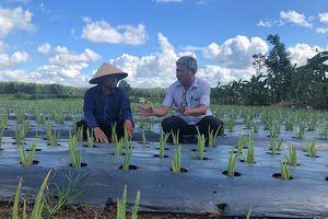 Kỳ 3: KHÔNG NGỪNG NÂNG CAO chất lượng xây dựng nông thôn mới