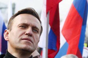 Nga nói về việc đi lại của chính khách đối lập Navalny sau vụ nghi bị hạ độc
