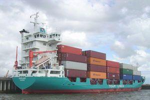 Việt Nam 'thăng hạng' trong Báo cáo Nhập khẩu toàn cầu của Mỹ