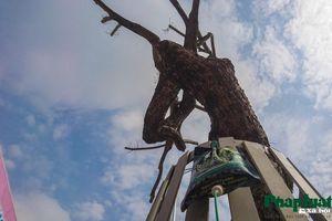 Truyền dịch cấp cứu hàng cây sưa đỏ trên đường Nguyễn Văn Huyên