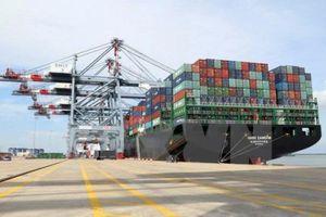 Doanh nghiệp EU xin làm trung tâm logistics Cái Mép Hạ gần 1 tỷ USD