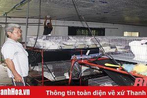 Nhiều sai phạm kéo dài tại HTX dịch vụ điện năng Hoằng Hải