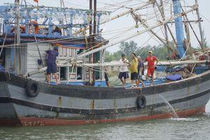 Tổng cục Phòng chống thiên tai kiểm tra công tác chống bão tại Quảng Trị