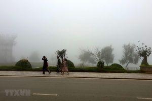 Nhiệt độ ở Sa Pa giảm sâu dưới ngưỡng rét hại: Chưa phải mức thấp nhất