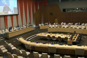 Việt Nam đánh giá cao những diễn biến tích cực ở Nam Sudan