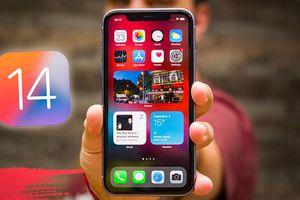 8 tính năng hay ho trên iOS 14 mà bạn nhất định phải thử sau khi nâng cấp