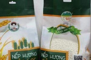 Cao Bằng: Nghiên cứu, bảo tồn và phát triển đặc sản gạo nếp hương Bảo Lạc